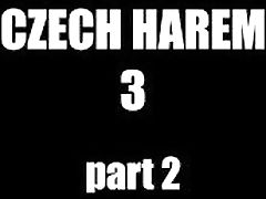 Czech Harem 3